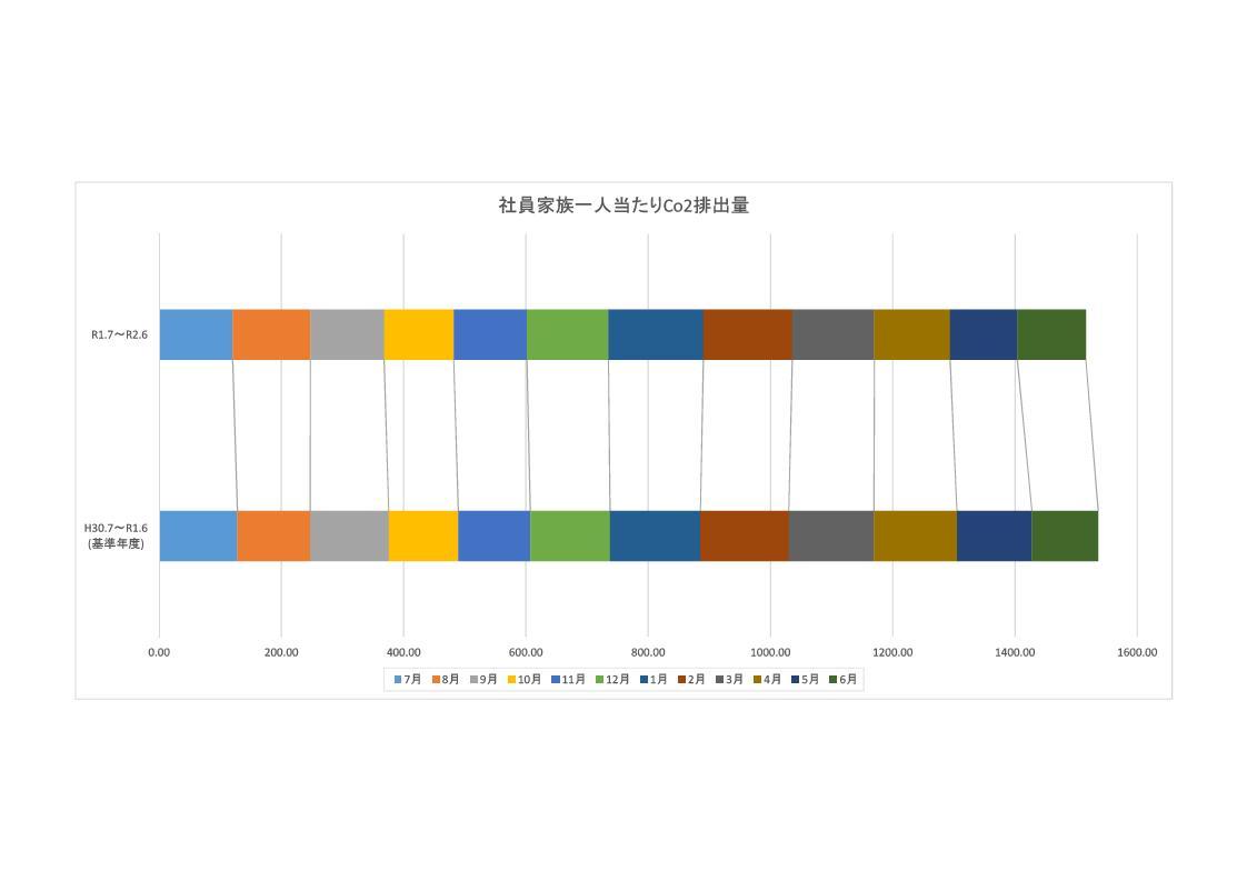 201002 グラフ 環境家計簿集計表